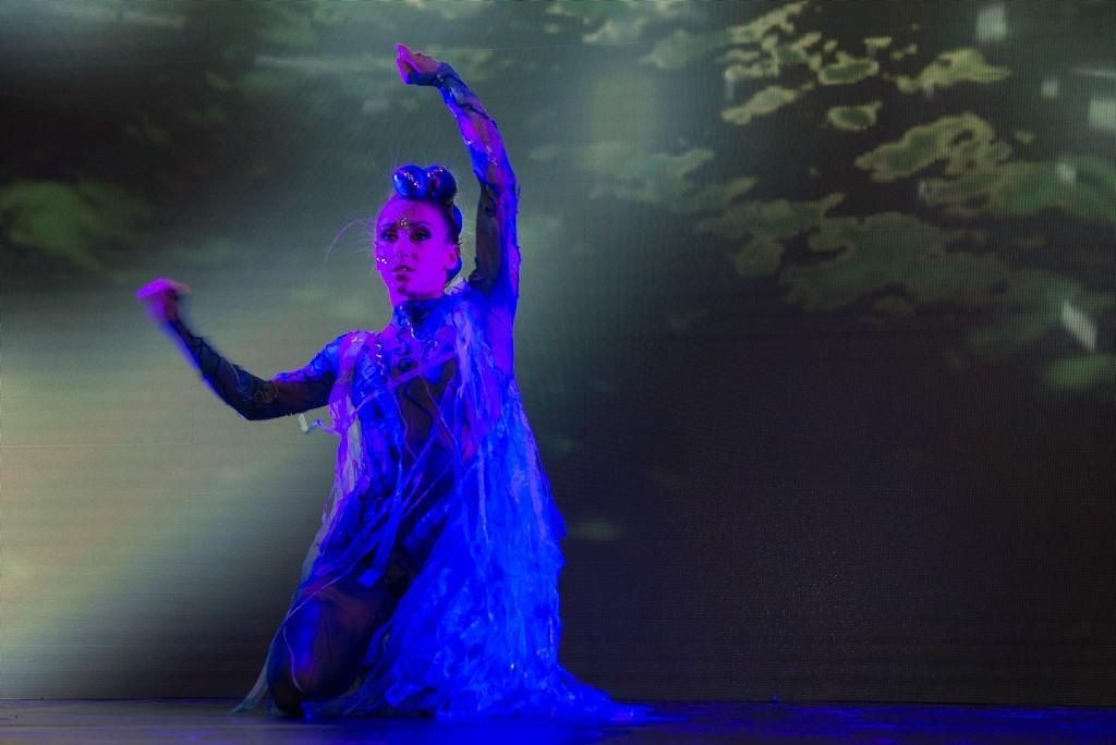 coreografias24