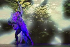 coreografias26