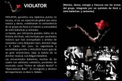 Violator1
